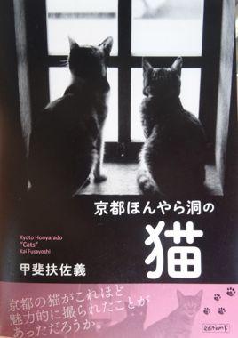 「京都ほんやら洞の猫」