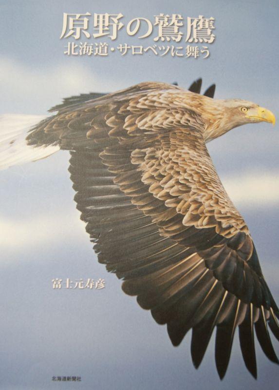 「原野の鷲鷹」